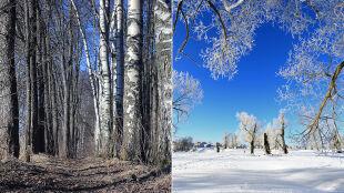 """""""Nasze zimy i lata będą wyglądać tak jak w 2015 roku"""""""