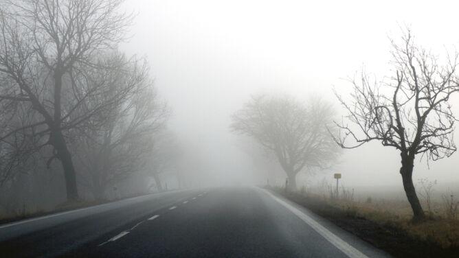 Pogoda drogowa na dziś: mgły nad Polską utrudniają jazdę
