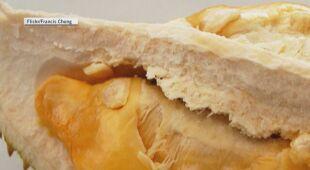 Durian ma bardzo odrzucający zapach
